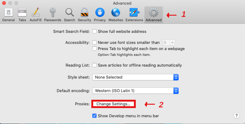 Safari Proxy Change Settings